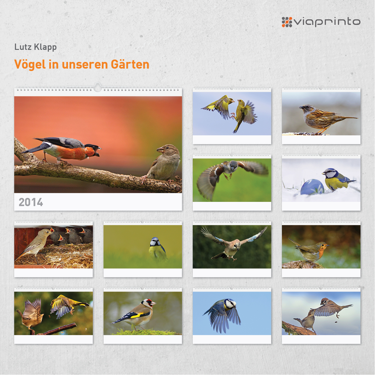https://www.viaprinto.de/motivkalender#/voegel_in_unseren_gaerten