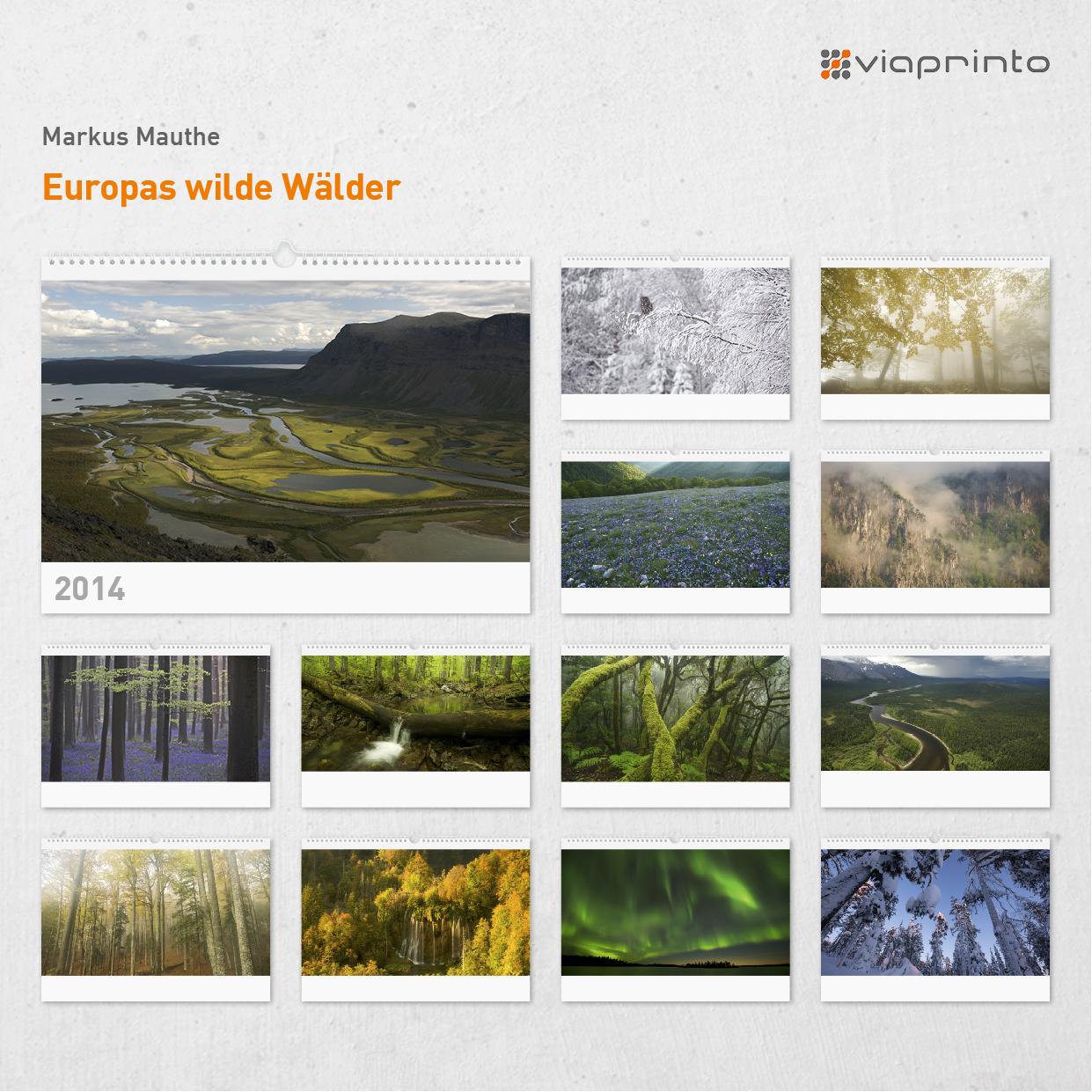 "Markus Mauthe - Motivkalender ""Europas wilde Wälder"""